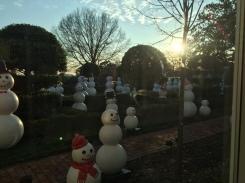 Snow families